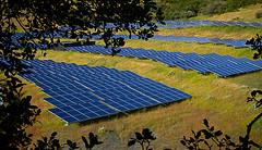largest-solar-img